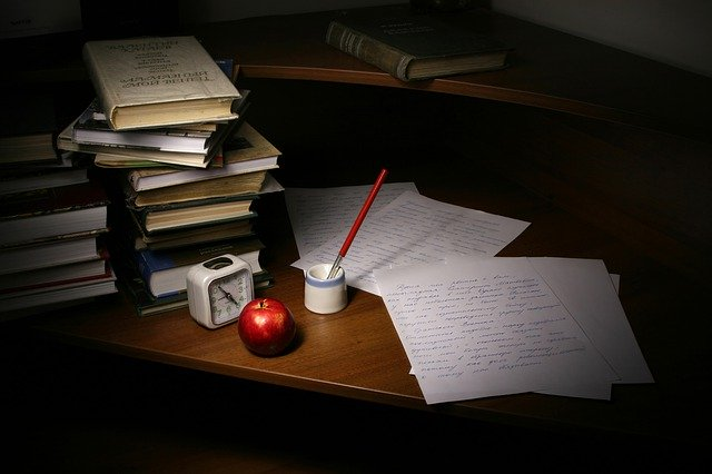 Write Essays for students